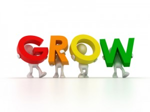 Grow Your Affiliate Marketing Business