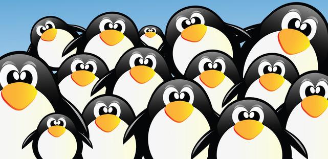 Google Penguin 3.0 Update -- Penguins On Parade